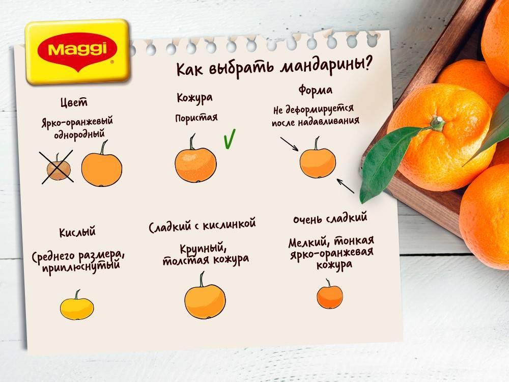 Цитрусовые детям (апельсины, мандарины): можно ли давать и когда