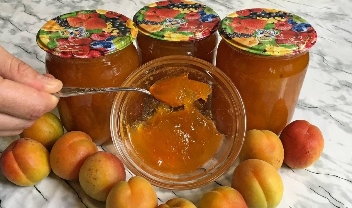 Можно ли есть абрикосы при грудном вскармливании