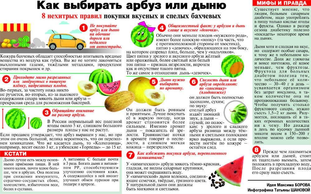 Дыня | компетентно о здоровье на ilive
