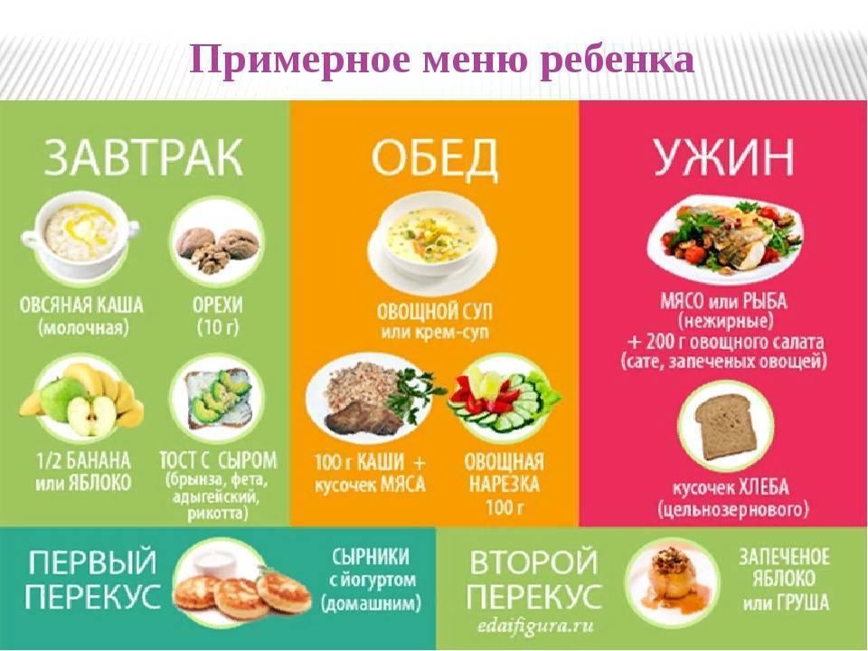 Мясо в рационе кормящей мамы: выбираем и готовим правильно