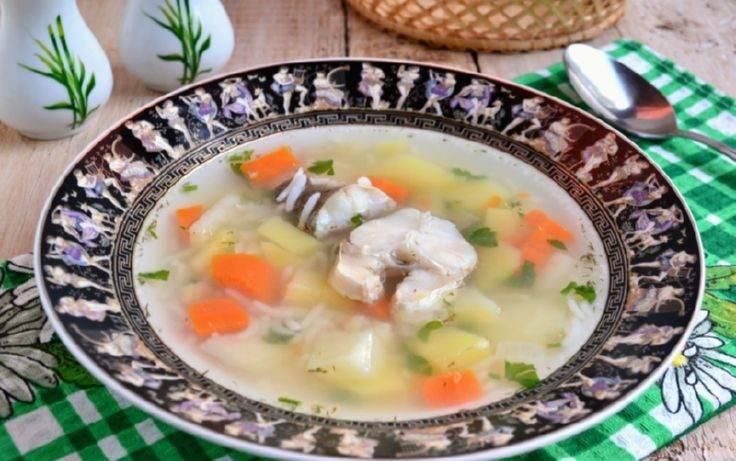Суп из рыбы для ребенка 1 год. треска для детей. уха из пеленгаса для детей — рецепт с фото