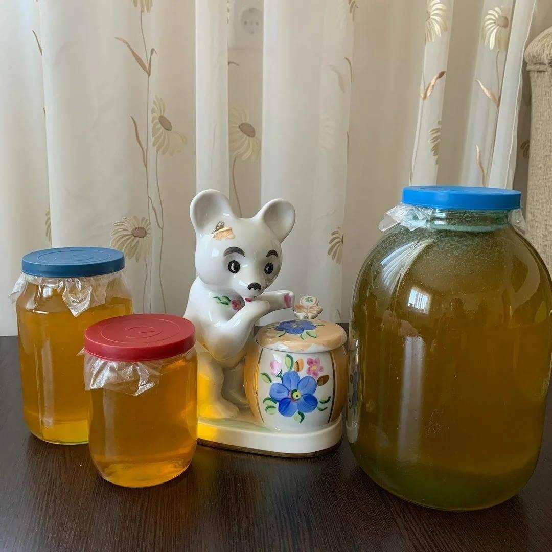 С какого возраста можно давать ребенку мед, мнение доктора комаровского, почему и когда детям нельзя мед