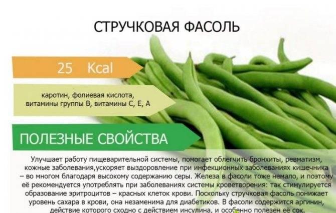 Можно ли употреблять шпинат при грудном вскармливании