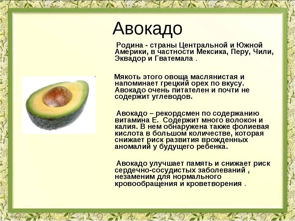 С какого возраста можно давать авокадо ребенку - все о детях