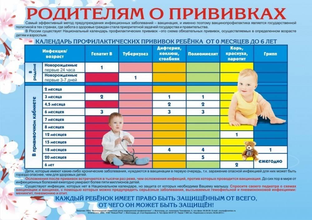 Календарь прививок для детей в россии 2019 год