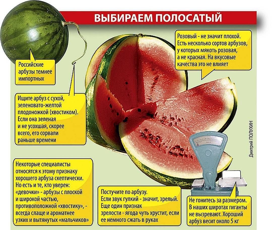 Как выбрать спелый и сладкий арбуз