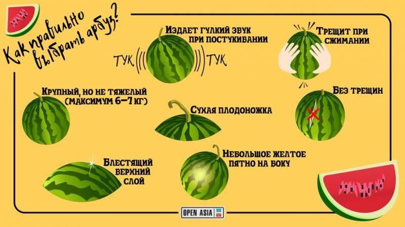 Как выбрать спелый и сладкий арбуз, признаки, что он без нитратов