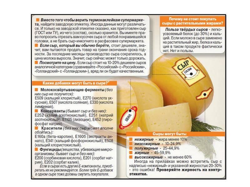 Как вводить сыр в питание ребенка, в каком возрасте включать в прикорм сыр