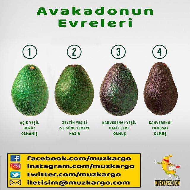 Можно ли давать авокадо детям: с какого возраста и сколько?