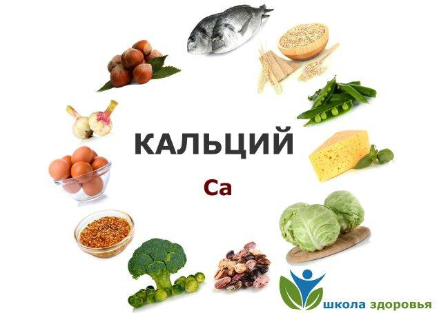 Продукты питания, богатые кальцием: для детей, беременных, норма в день, таблица
