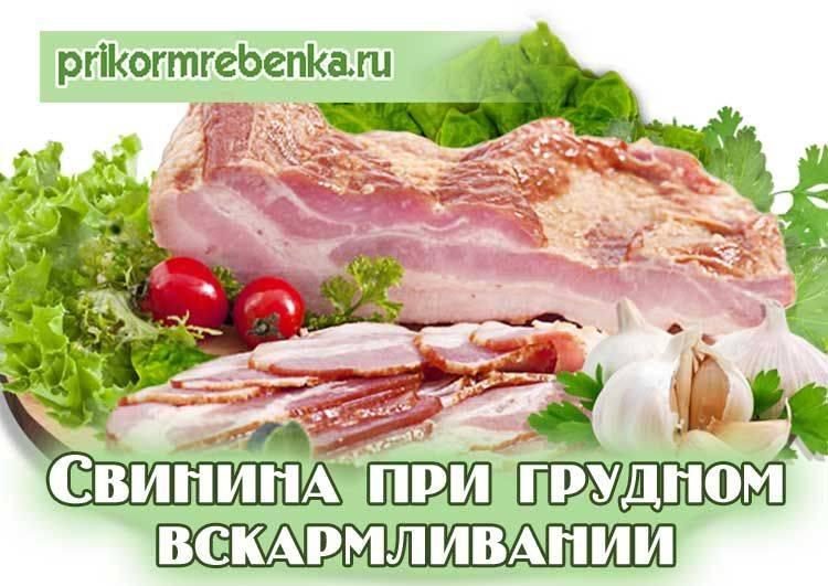 Можно ли свинину при грудном вскармливании