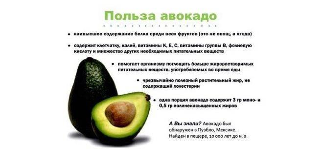 С какого возраста можно включать авокадо в рацион ребенка?