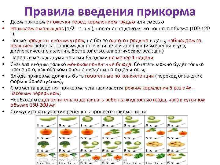 Лучшие сорта кабачков и цукини 2020 для открытого грунта: отзывы, фото семян, по регионам лучшие сорта кабачков и цукини 2020 для открытого грунта: отзывы, фото семян, по регионам