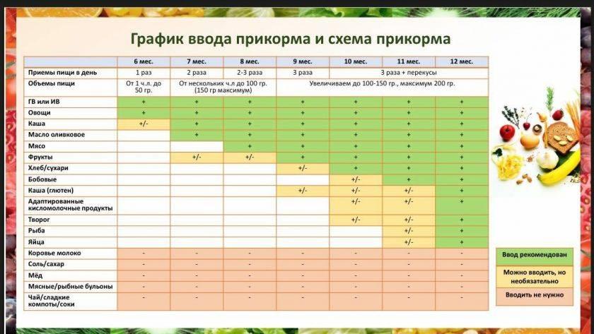 Чем отличаются цукини и кабачки: в чем принципиальная разница, разбираем вкусовые качества и условия выращивания