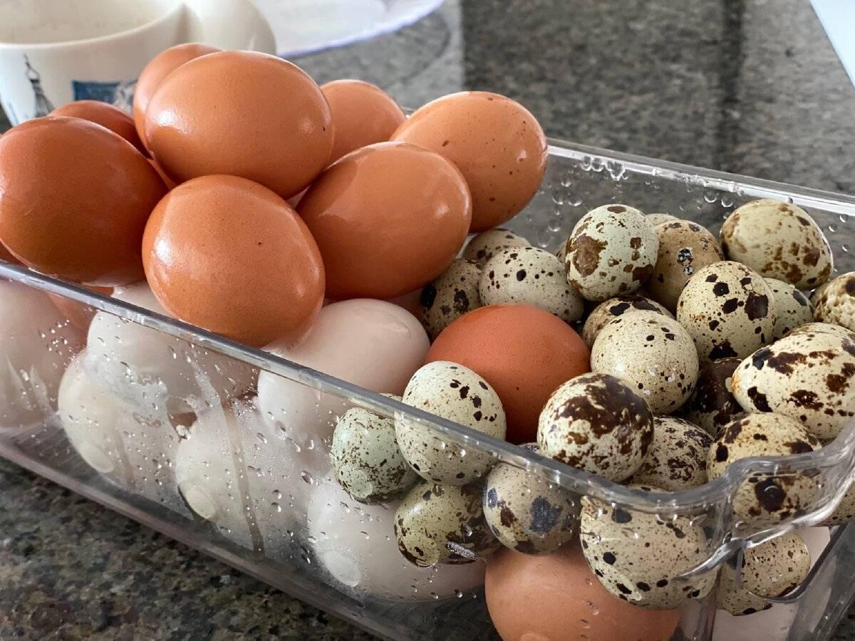 Употребление яиц при грудном вскармливании и беременности