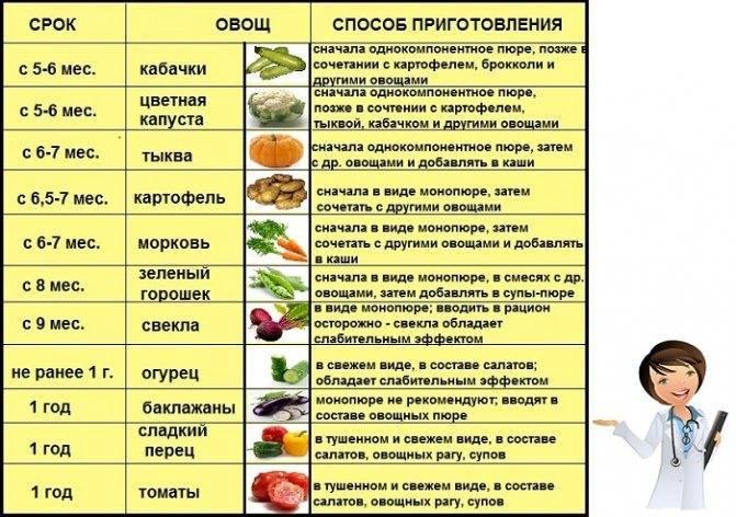 Чеснок детям: с какого возраста можно давать его есть и со скольких лет разрешается нюхать в лечебных целях, а также когда овощ противопоказан? русский фермер