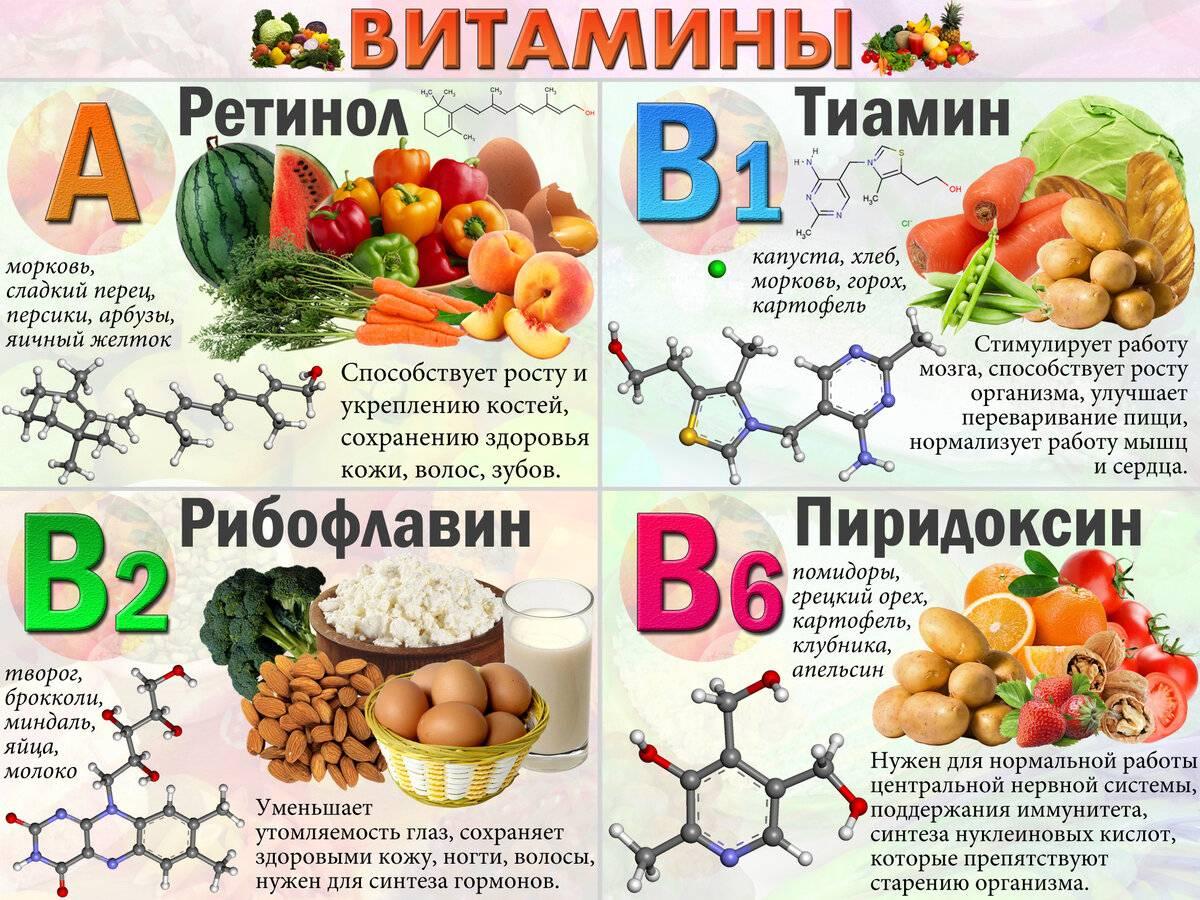 Витамин а: роль в организме, норма, советы по применению :: здоровье :: рбк стиль