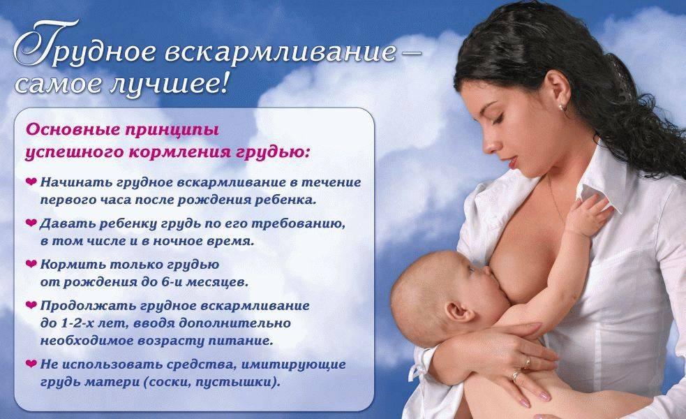 Кормление грудью — альтернативы нет!