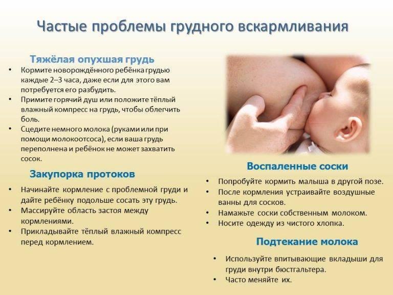 Ново-пассит при беременности и грудном вскармливании – можно ли новопассит кормящим мамам?