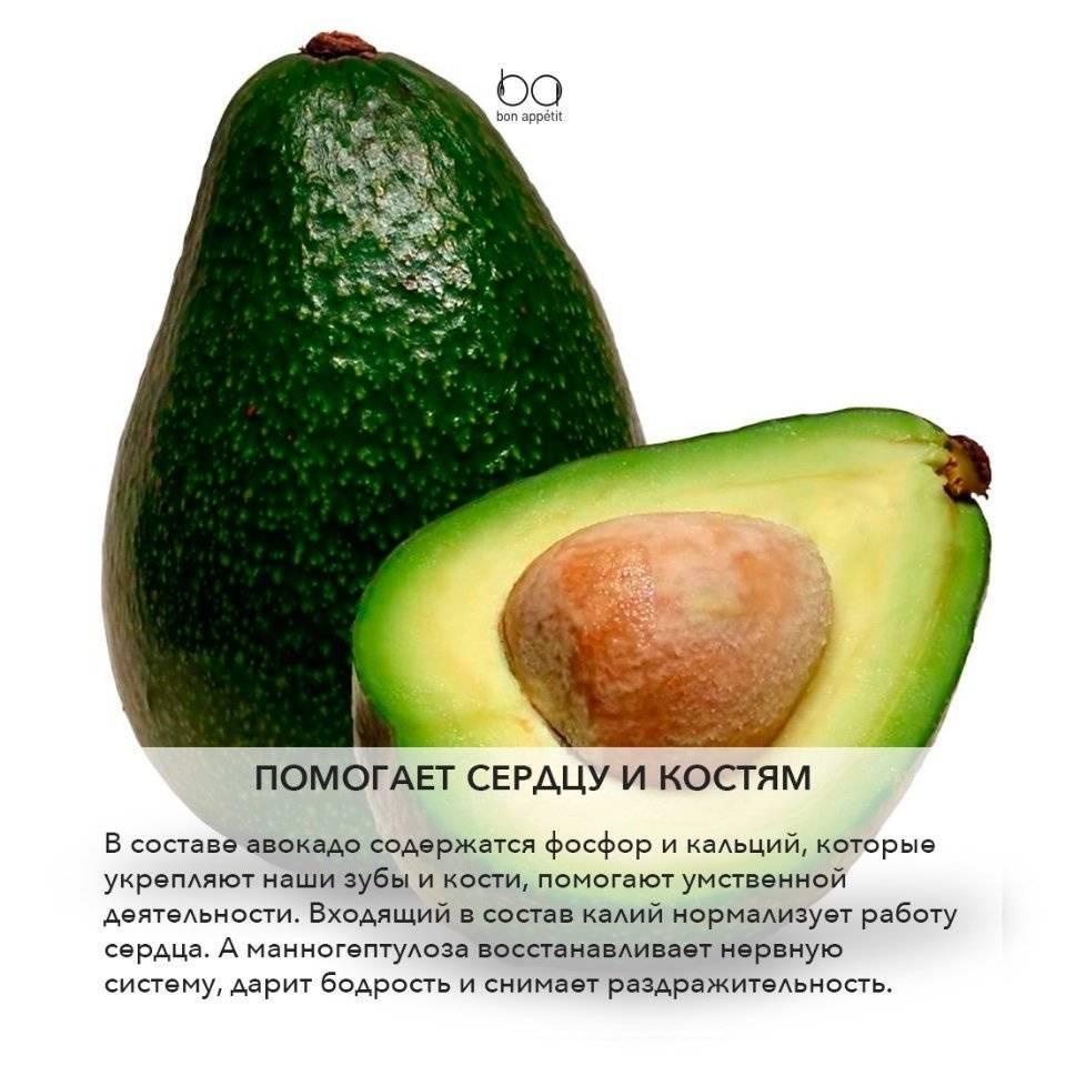 Авокадо: как правильно выбрать и какая от него польза?