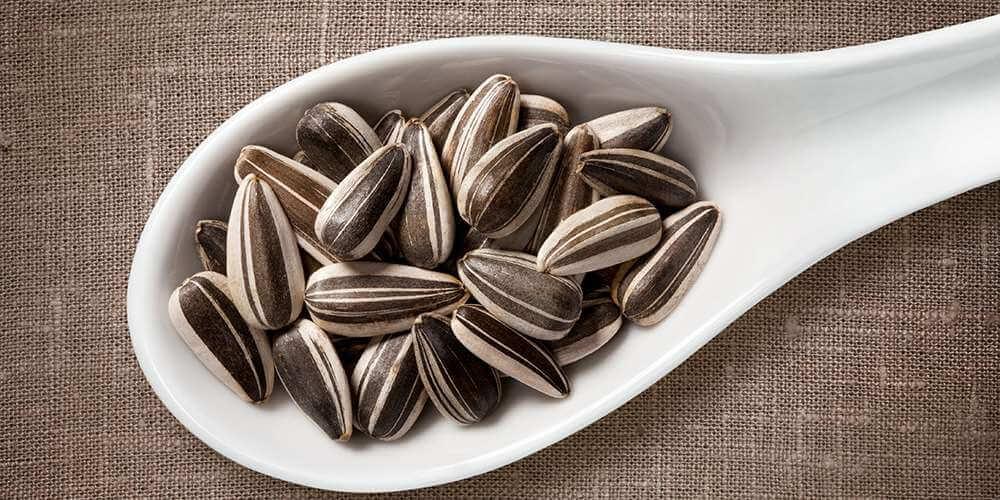 Можно ли семечки кормящей маме (подсолнечные, тыквенные, кунжутные)?