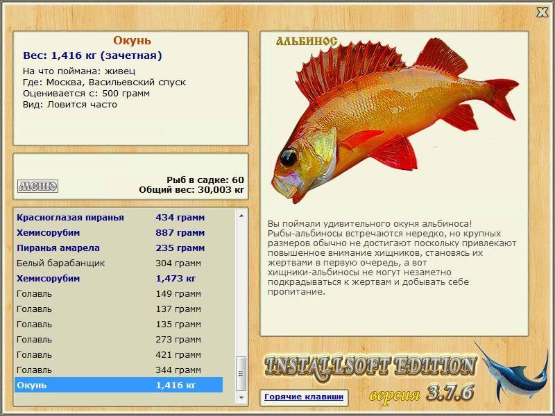 Паразиты в морской рыбе: анизакидоз – симптомы и лечение - сибирский медицинский портал