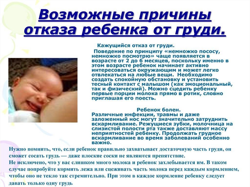 Малыш отказывается от груди. что делать? отказ ребенка от грудного вскармливания