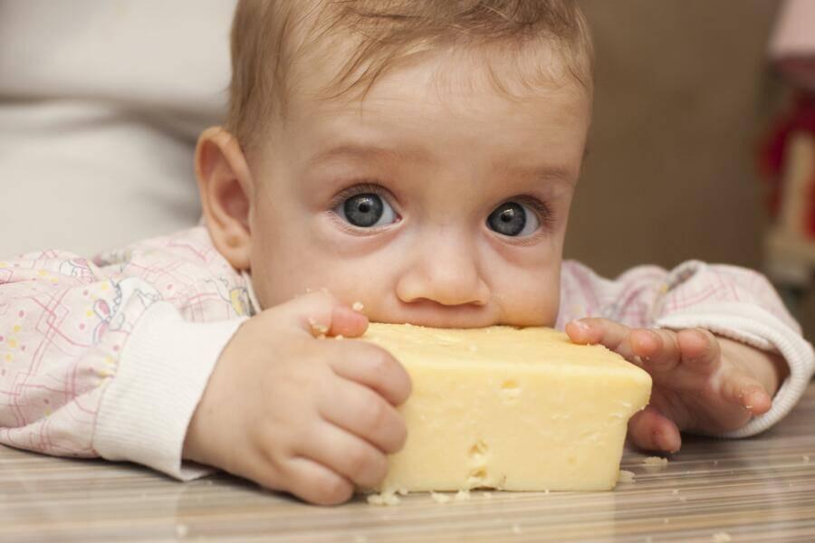 Полезен ли сыр детям? сыр в детском питании. когда и какой сыр можно давать детям.