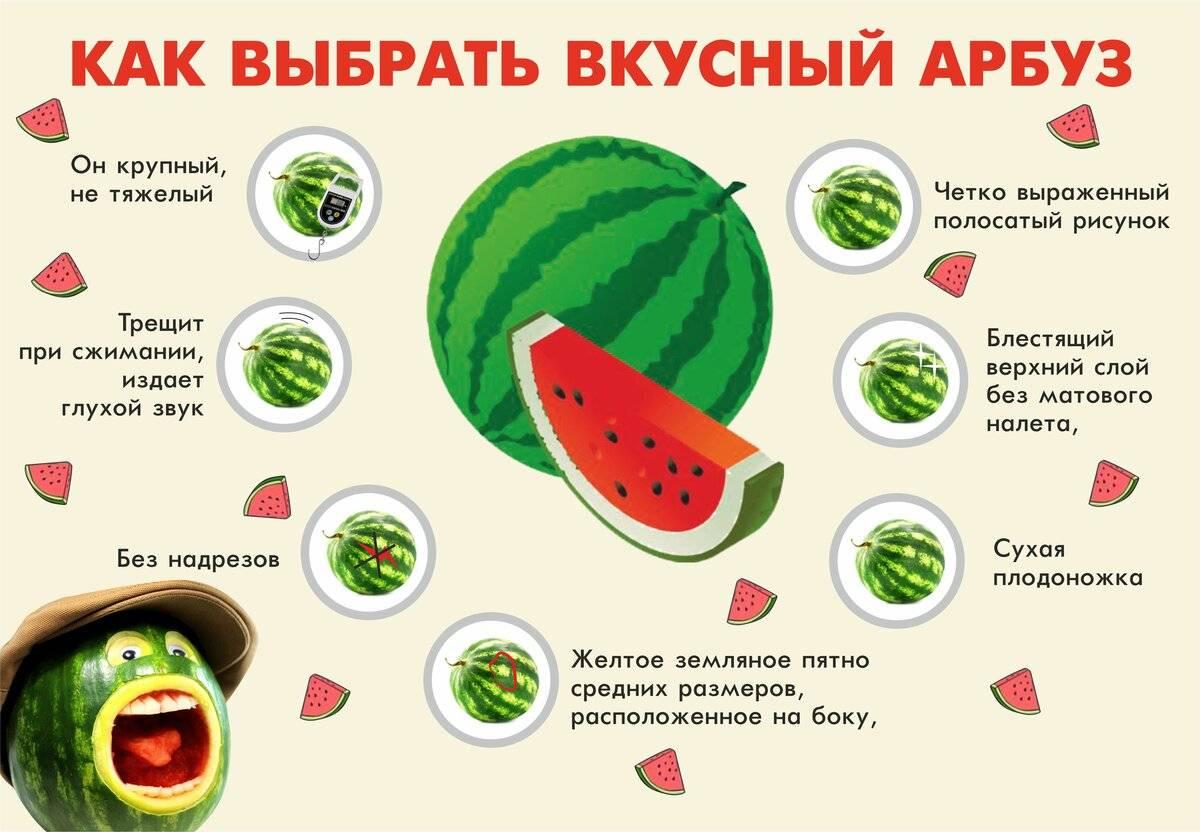 Как выбрать спелый, сладкий и вкусный арбуз без нитратов, проверенные методы
