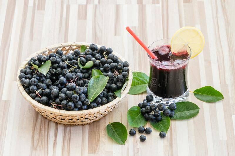 Черноплодная рябина при грудном вскармливании: польза, лечебные свойства, рецепты