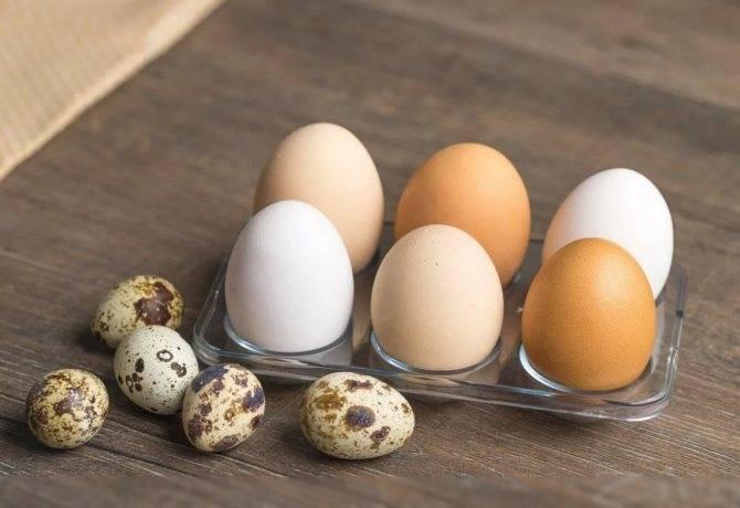 Яйца при грудном вскармливании: жареные, вареные, правила употребления