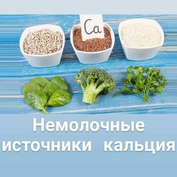 Ценный кальций – в каких продуктах содержится и как употреблять их правильно