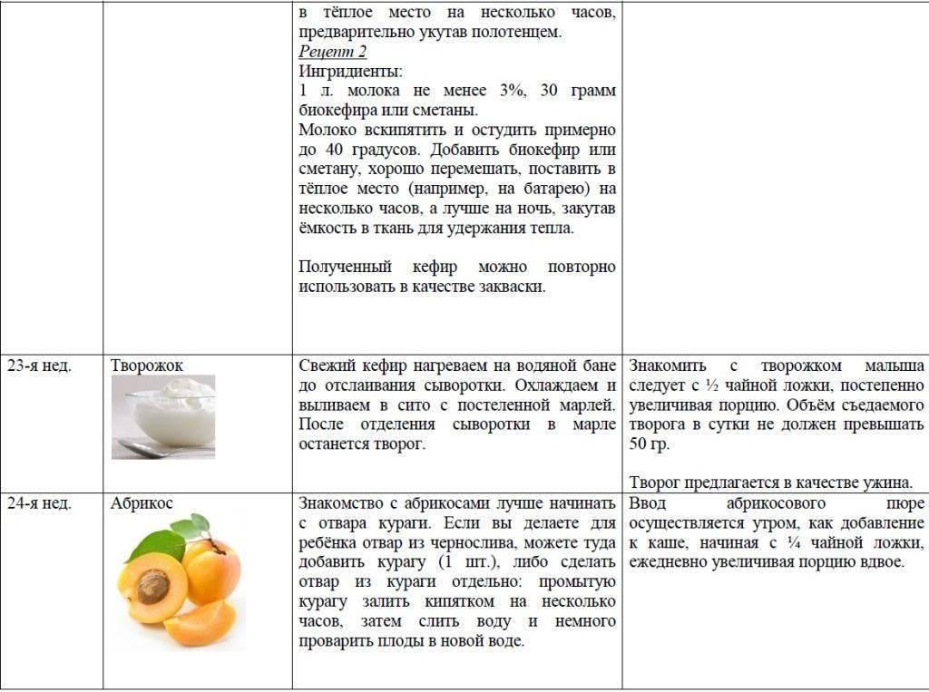 Цукини и кабачки: чем они отличаются друг от друга