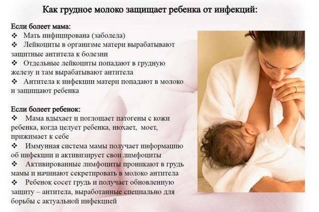 Особенности питания кормящей матери