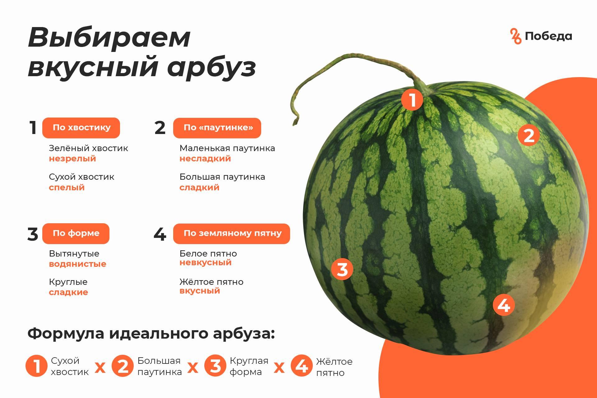 Как выбрать спелый арбуз? как выбрать спелый и сладкий арбуз: советы покупателю :: syl.ru