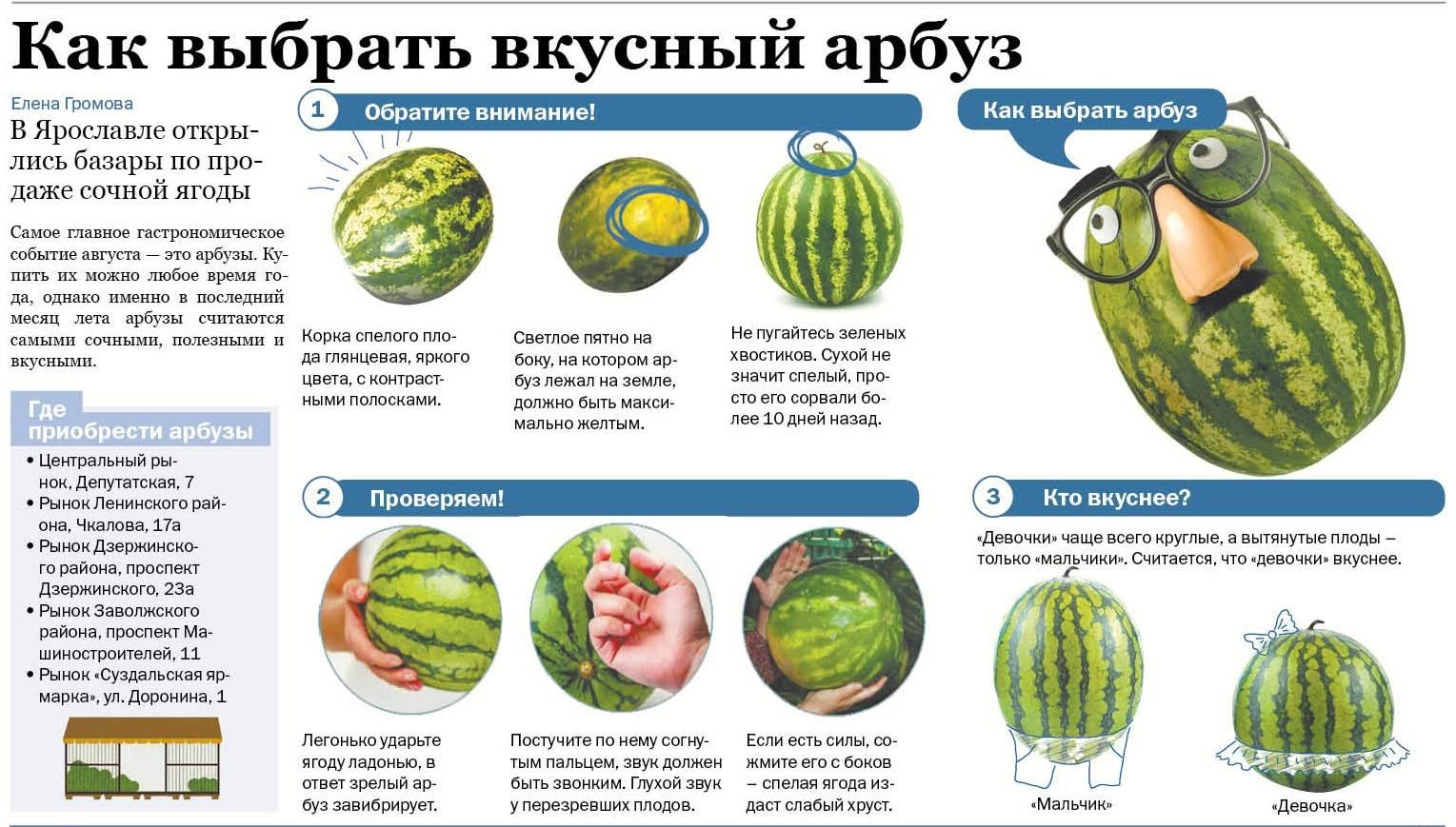 Как выбрать спелый и сладкий арбуз: признаки, приметы, рекомендации