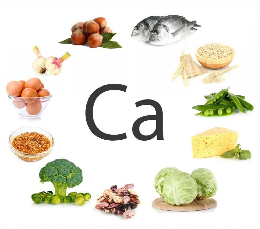 В каких продуктах содержится кальций (таблица) | fitbreak! всё о фитнесе и бодибилдинге