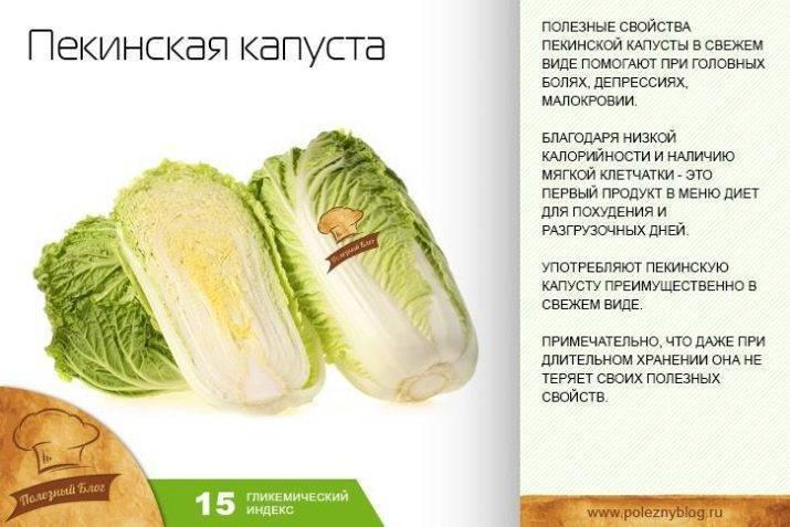 Щи при грудном вскармливании: можно ли кушать из свежей капусты