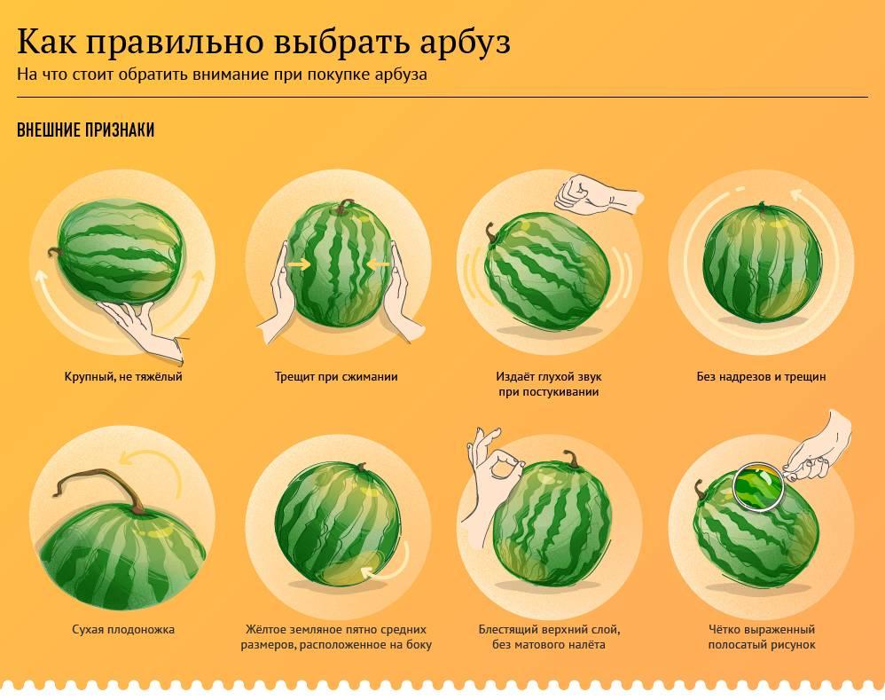 Как правильно выбрать сладкий арбуз - проверенные методы.