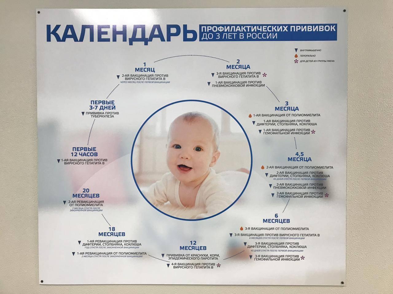 Что нужно знать о процедуре прививки. родителям на заметку. специалисты о прививках