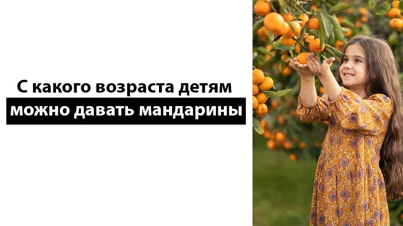 Через сколько можно есть после установки световой пломбы? - статьи стоматологической клиники доктор мартин в москве