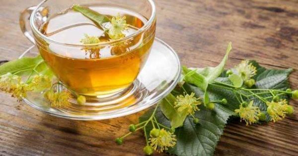 Вкусный и тонизирующий: правила употребления чая с бергамотом при грудном вскармливании