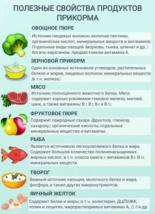 Шпинат при грудном вскармливании: полезные свойства, рецепты