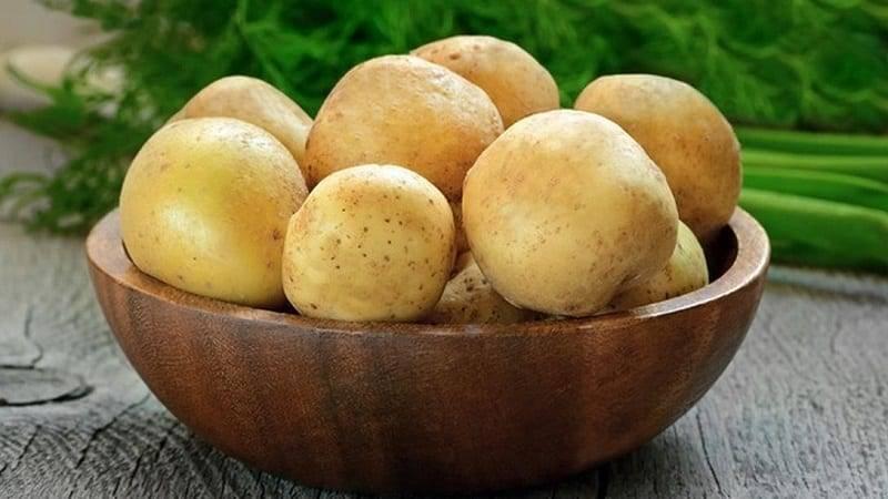 Картофельное пюре при грудном вскармливании