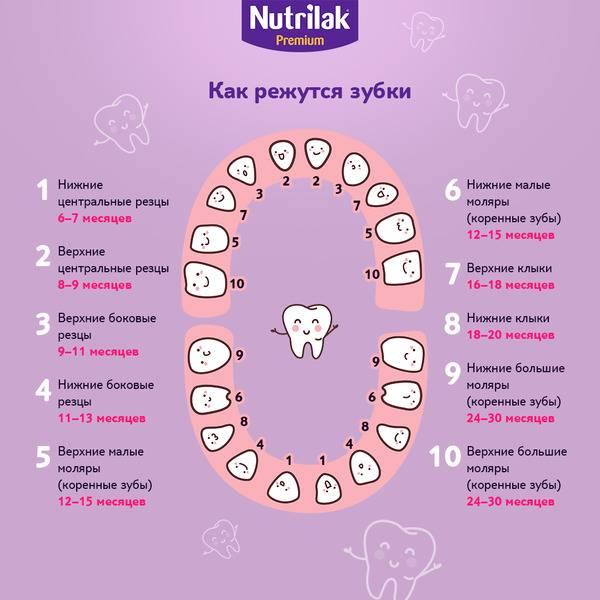 Когда начинать чистить зубы ребенку: советы врача-стоматолога