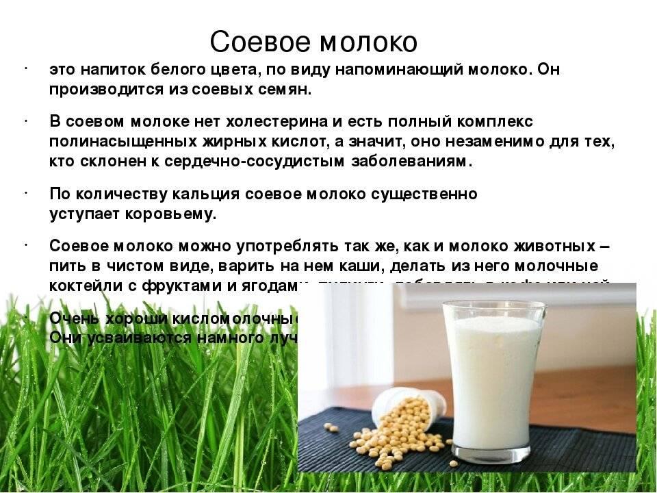 Соевое молоко для детей: полезно или вредно?