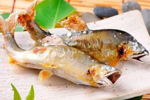 Можно ли копченую рыбу при грудном вскармливании   mam-book
