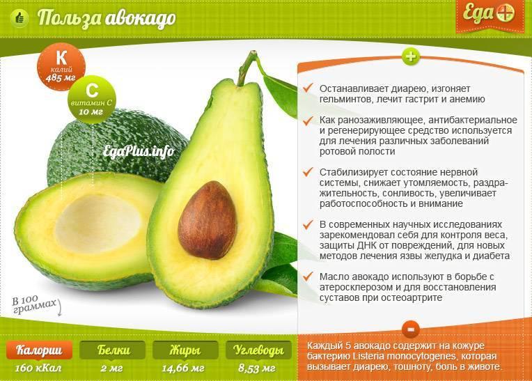 Авокадо в рационе малышей: угроза или польза? с какого возраста можно давать ребенку авокадо