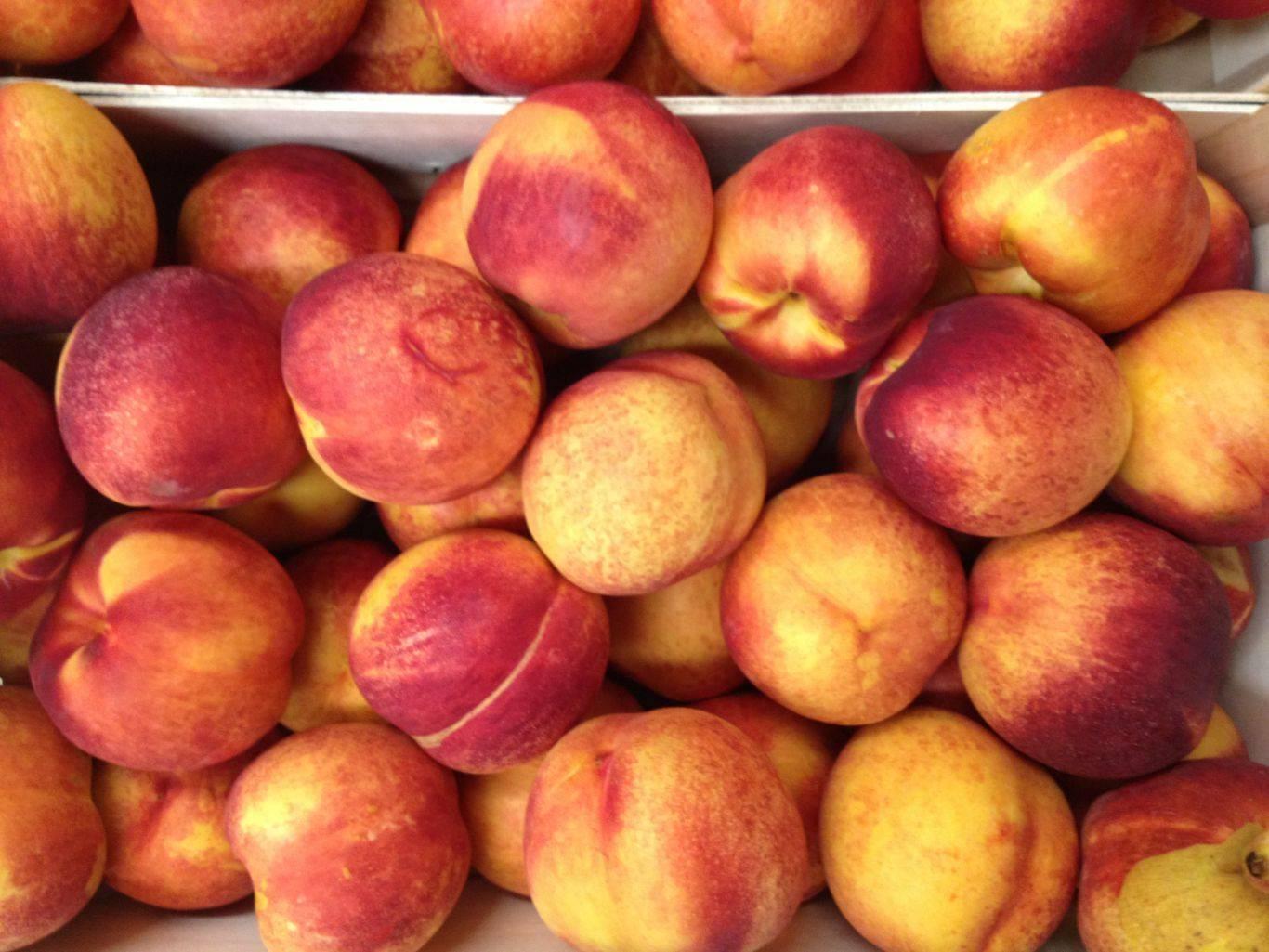 Персики и нектарины при грудном вскармливании