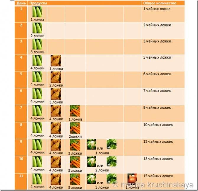 Первый прикорм: кабачок и цуккини